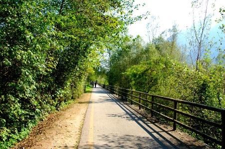 auf dem Wander- und Radweg