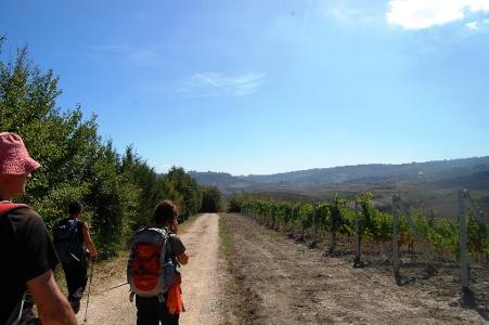Orvieto kommt näher