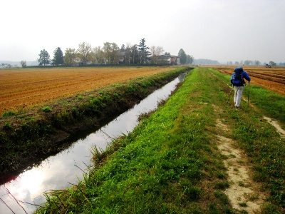 irrigation channels whereever you look