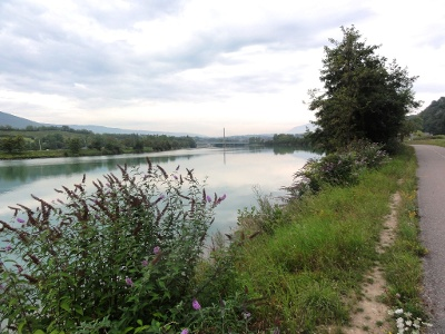 gestaute Rhône unterhalb Seyssel