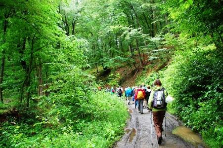 in den Aufstiege des Harz-Gebirges