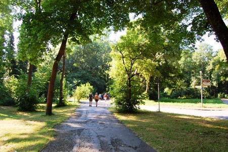 durch den Park