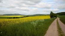 Ökum. Pilgerweg: Buchholz - Bautzen