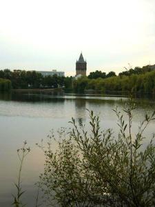 Blick zurück auf Merseburg