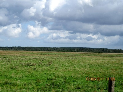 Rauhes Moor oder auch Grenztalmoor