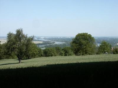 Blick auf den Rhein beim Kreisberg
