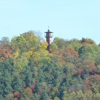 Schlossberg Regenstauf im Herbst