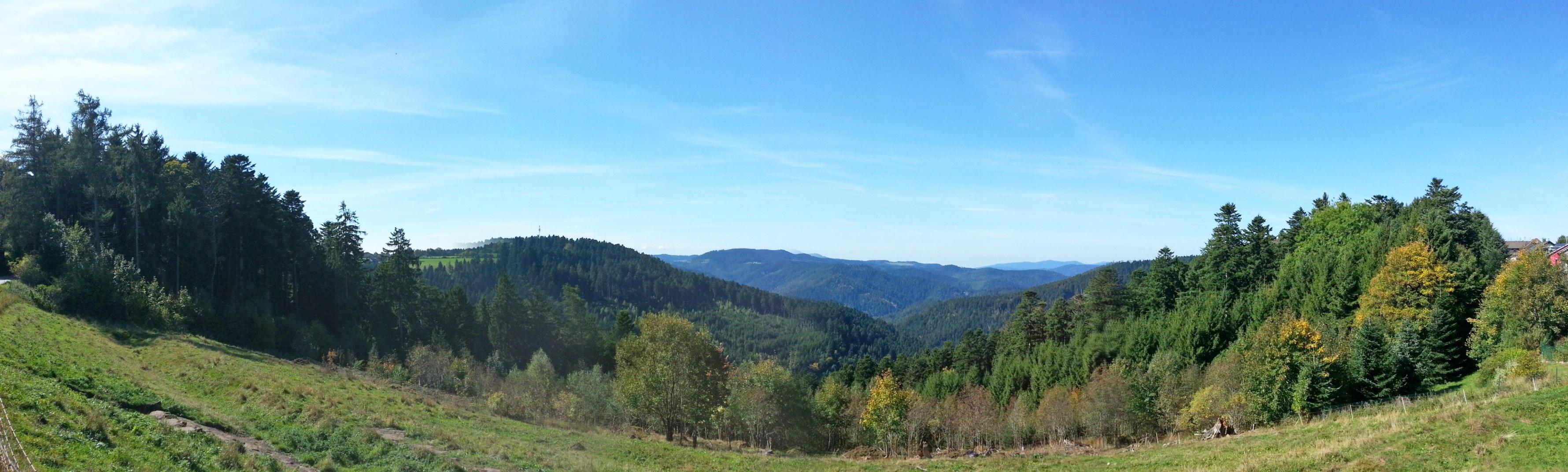 Panorama bei Aichhalden