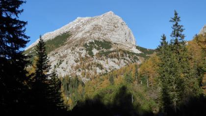 Blick zurück auf den Gipfel des Zinödls (Richtung Norden)