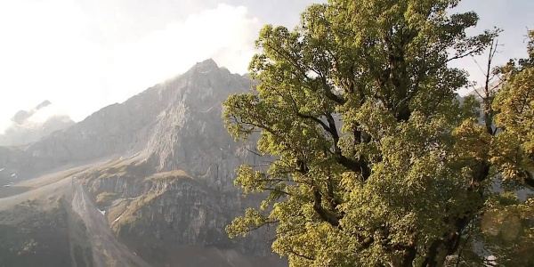 Falkenhütte - Karwendelgebirge