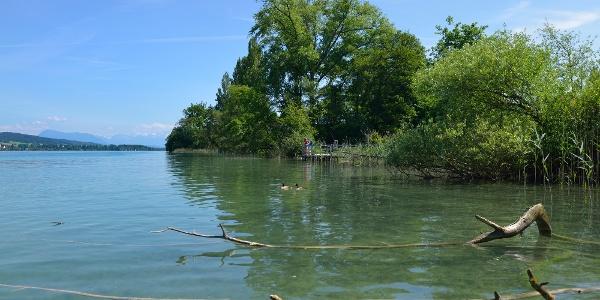 Seeuferweg Hallwilersee bei Beinwil am See