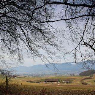 Bucheggberger Höhenzug mit Jurablick.
