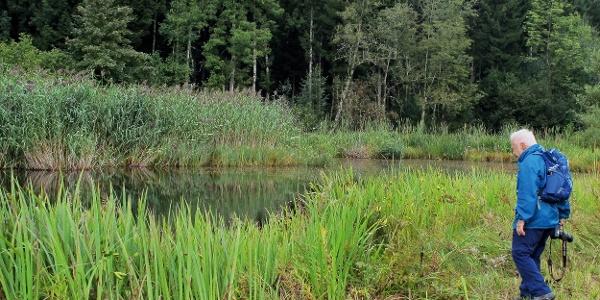 Naturschutzgebiet Vogelmoos.
