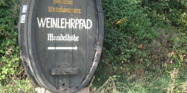 Weinlehrpfad Mandelhöhe