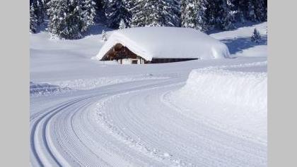 winterliche Verhältnisse auf der Lienbachloipe