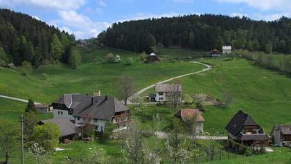 Auf und Ab im Eichbachtal