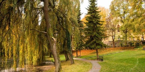 Im Park von Vellerhof …