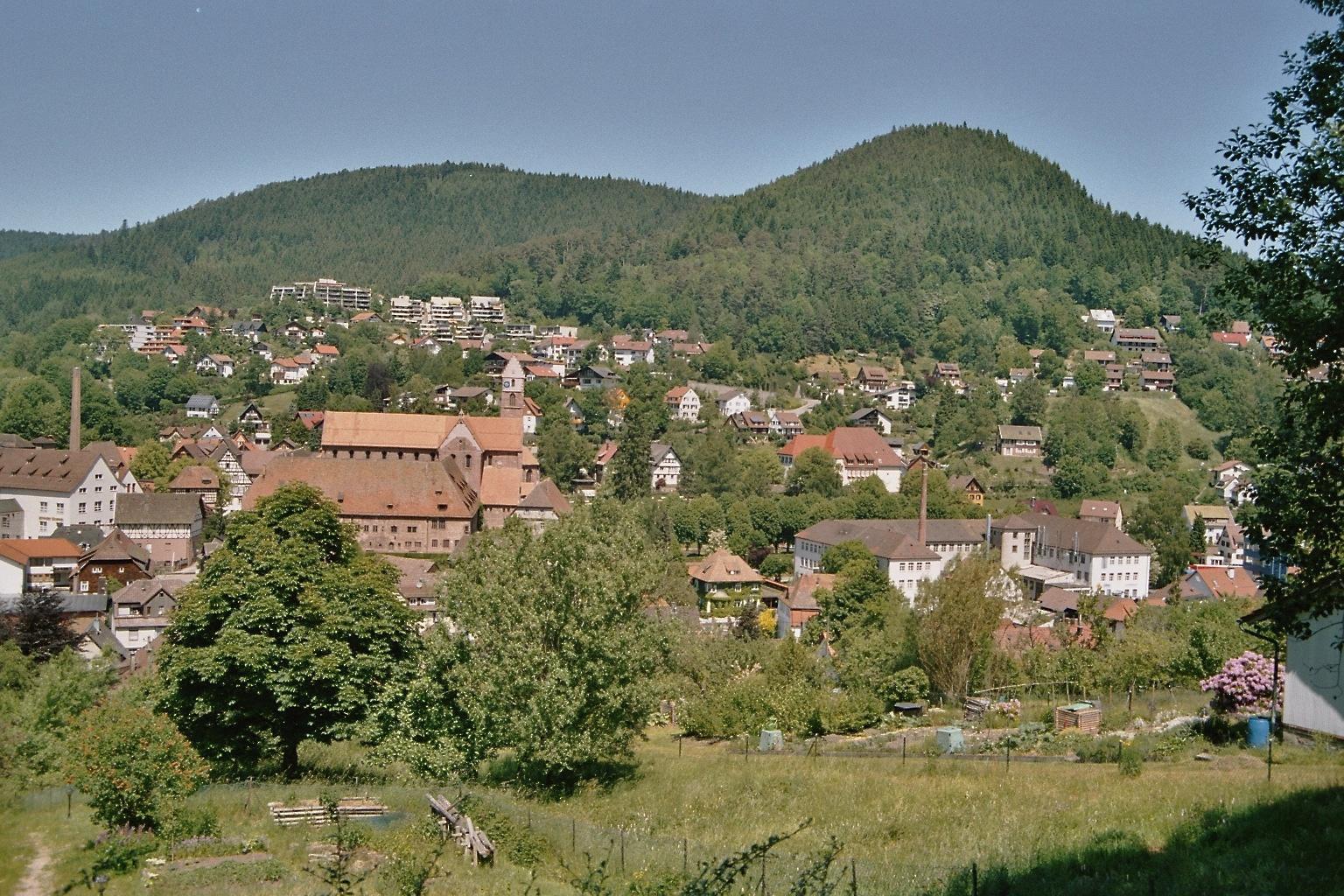 Blick auf Alpirsbach