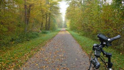 Radweg kurz hinter Fuchshofen