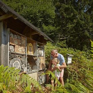 Insektenhotel Naturlehrpfad