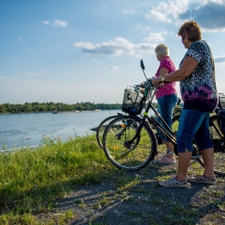 Ausblicke auf den Rhein