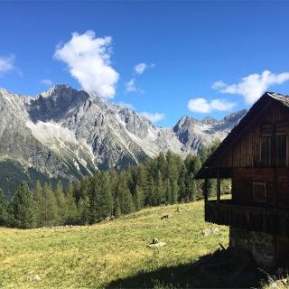Grüblalm Hut