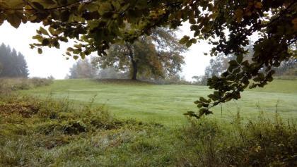 Am Weg nach Minimundus, die Ausläufer des Golfplatzes Seltenheim in Tultschnig