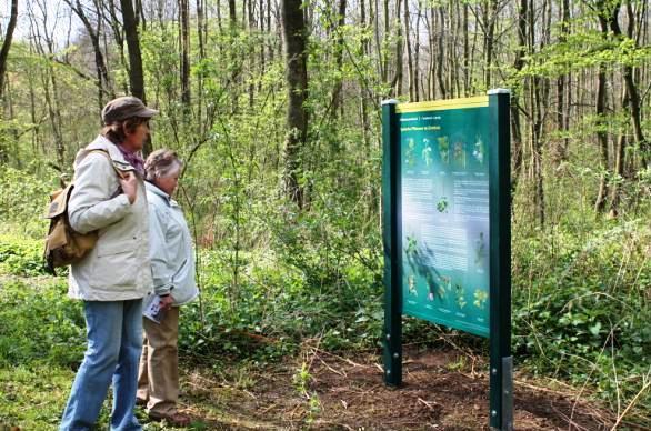 Informationstafel am Naturlehrpfad im Zwenkauer Eichholz