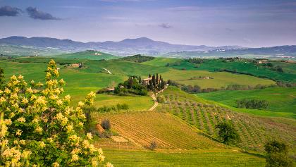 Chianti countryside views