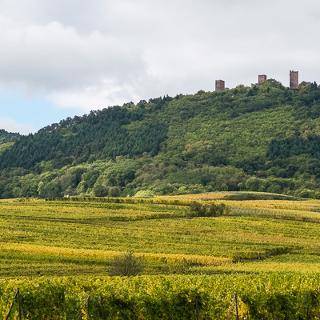 Blick auf die 3 Exen kurz hinter Eguisheim