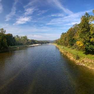 Auenwald Thurmündung an der Elliker Brücke