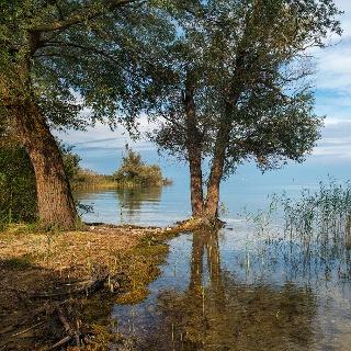 Naturschutzgebiet Rohrspitz