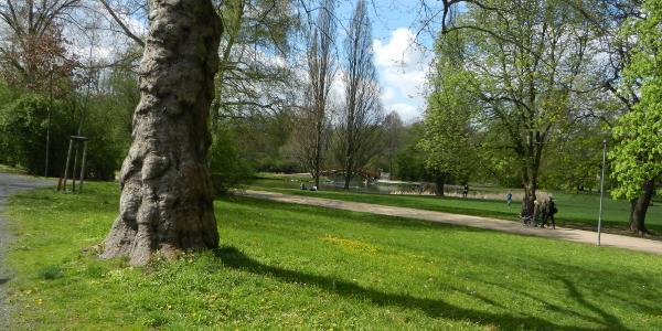 Park (Das Scheibenholz)