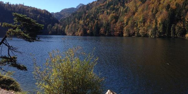 Hechtsee im Herbst