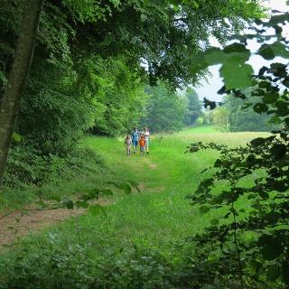 Auf dem Schatzsuche-Trail bei Aeschiried.