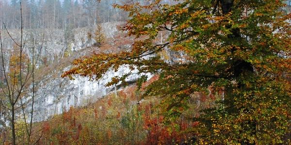 Herbst im Tal des Stimitzbachs