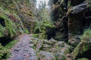 Foto Im Uttewalder Grund