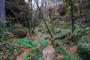 Foto Im Kehlloch bei Uttewalde