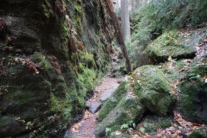 Foto Wilde Schluchten zwischen Uttewalde und Wehlen