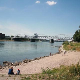 Mannheim Rhine promenade