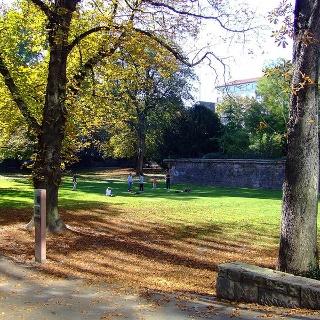Lauersche gardens in Mannheim