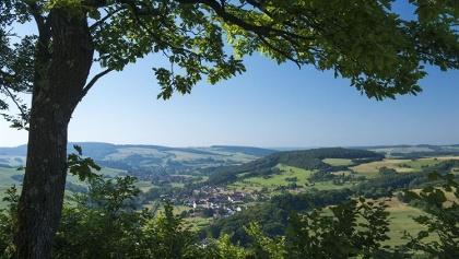 Blick von der Michelsburg