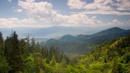 Bordjomi Mountains