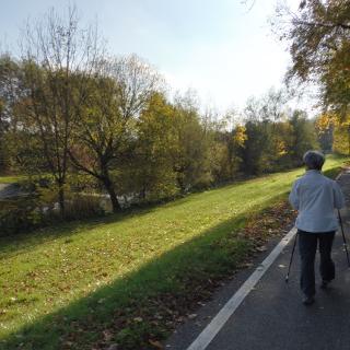 Am Stadtrand von Lörrach entlang der Wiese