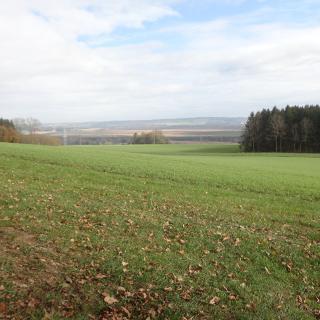 Blick von der Grabener Höhe nach Bad Wurzach und das Riedi
