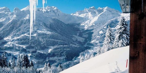 Winter Drei Türme