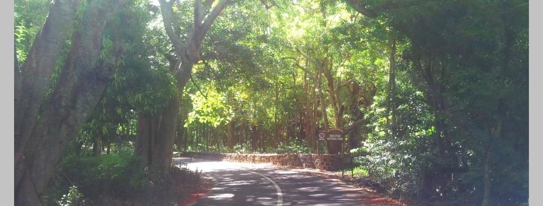 Bras d'Eau National Park Entrance