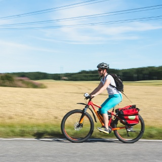 You can see a lot of fields along your cycling route at Lake Lohja