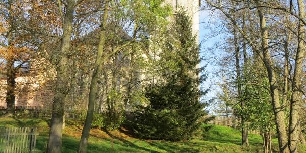Schlosskirche Mühltroff