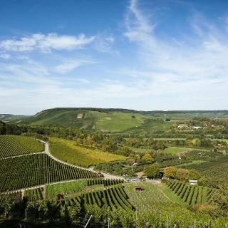 Weingut & Besenwirtschaft Leiss
